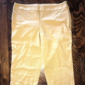 Talbots Classic Side Zip Ankle Pants